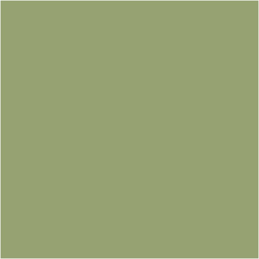 pent art farba olivová zelená