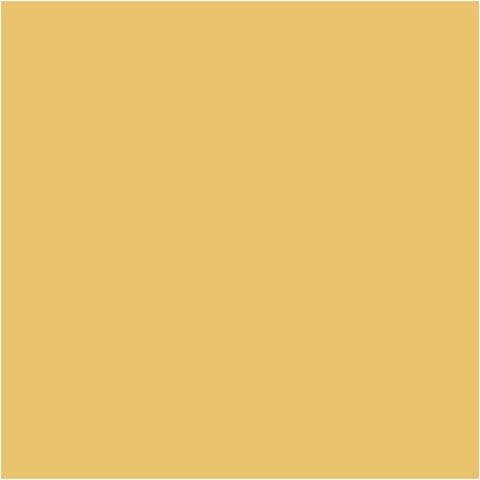 pent art farba mandarínková